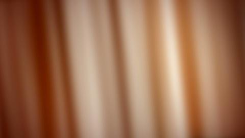 brown banding Stock Video Footage