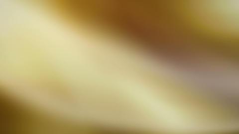 yellow fuzz Stock Video Footage