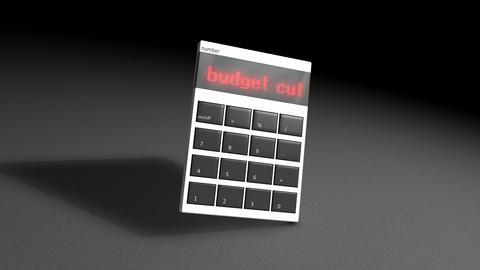 Budget cut Animation