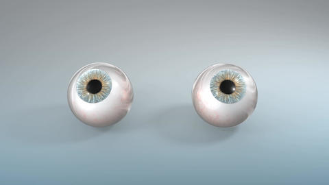 Human eyeballs Animation
