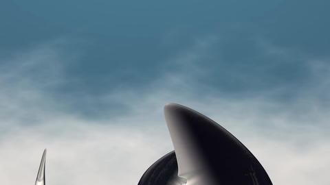 Shark Fin stock footage