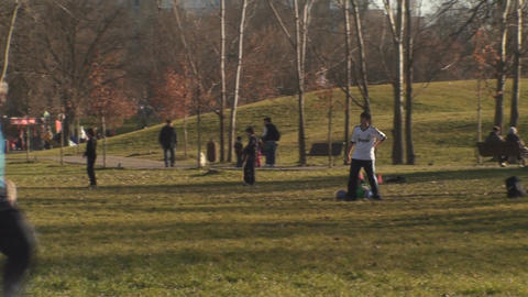 Family In The Park Playing Soccer Pan-Shot stock footage