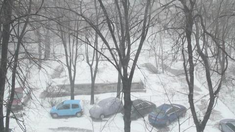 Heavy Snowing Detail Disaster, Calamity, Tilt-Shot Footage