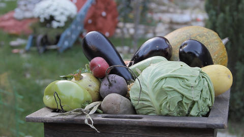 Fresh Vegetable In A Basket stock footage