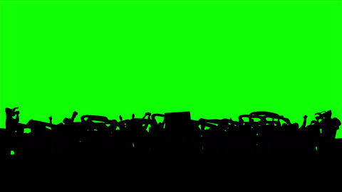 Football Fans On Green Screen stock footage