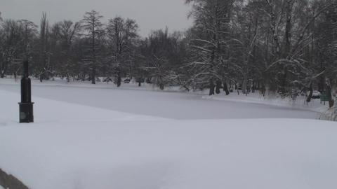 Frozen Lake In A Park Tilt-Shot 2 Footage