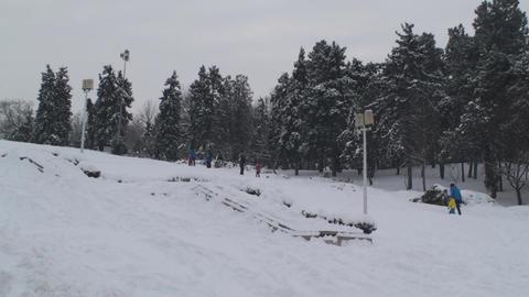 Kids Having Fun Sliding On A Slippery Slope Side-S Footage