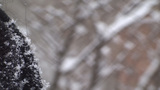 Snow Flakes On Black Coat Shoulder Detail stock footage