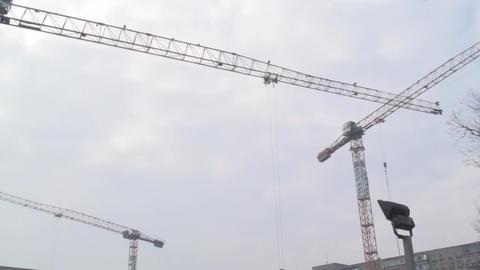 Cranes Working Still-Shot Footage
