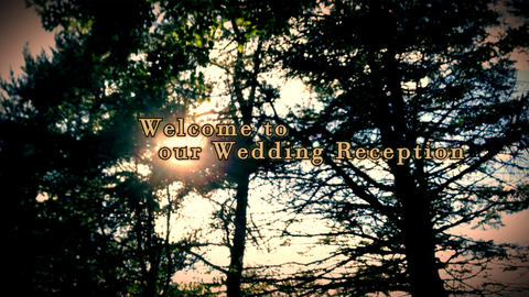 welcome to our wedding reception on a wood Footage