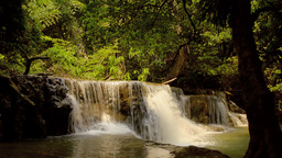 Waterfall Surrounded by Trees in a Jungle in Thail Footage