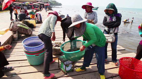 On the market in Kep is a trade crabs. Cambodia Footage