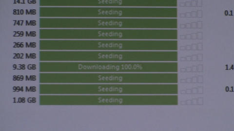 Torrents Seeding Footage