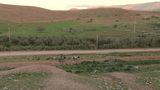 FT 0054 Donkeys Carry Gas Cans 4 24 P No Aud PJ 95 Footage