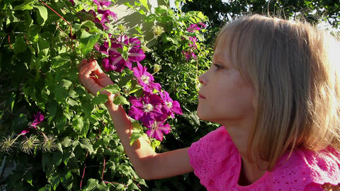 Girl And Tropical Flowers stock footage