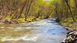 Mountain Stream, Time Lapse 4K Footage