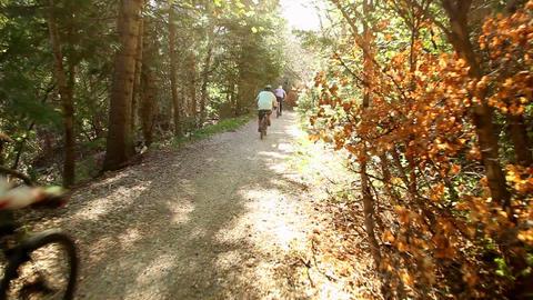 Mountain biking glidecam shot Live Action