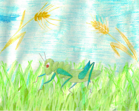 grasshopper cartoon Animation