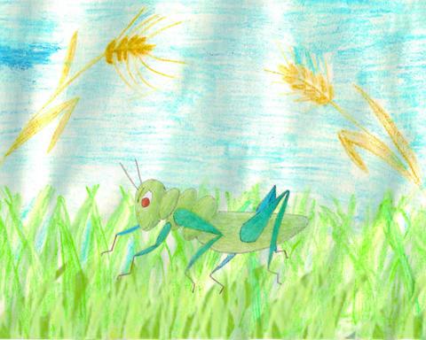 grasshopper cartoon Animation