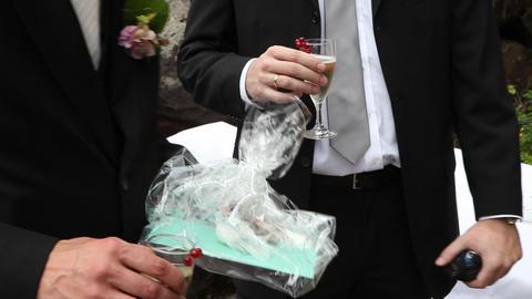 champaigne reception Footage
