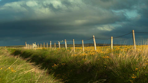 Rustic Wooden Fence In Evening Light In Iceland stock footage