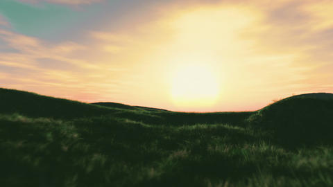 Summer Field 2 Animation