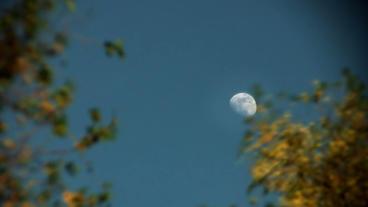 Timelapse afternoon moon Footage