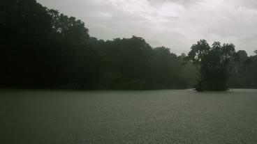 Timelapse Botanical Gardens lake Footage