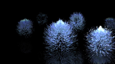 Light plant Animation