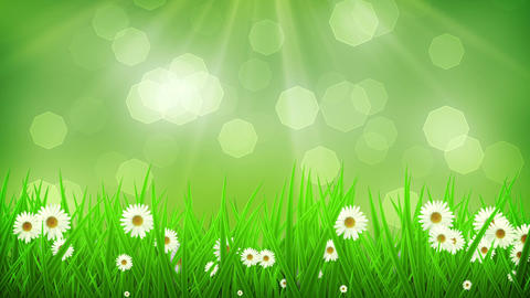 Spring Background 02 Animation