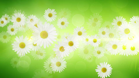 Spring Background 04 Animation