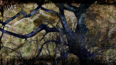 tree composite Animation
