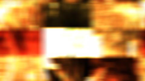 wild tile Stock Video Footage