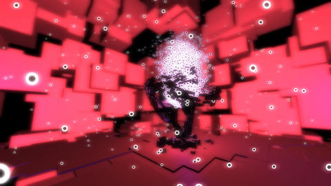 particle tree Stock Video Footage