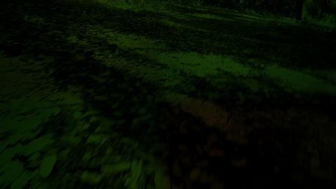 quad walker Stock Video Footage
