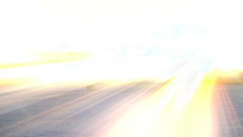 funchai sunshine Stock Video Footage