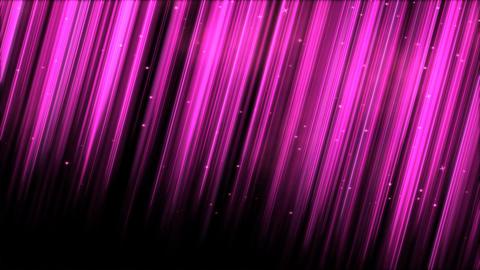 Light Rays - Loop Pink Animation