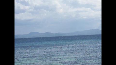 Caribbean Beaches 3 0