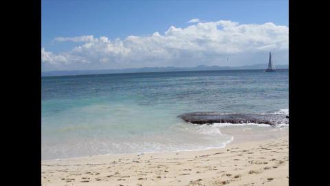 caribbean paradise island Footage