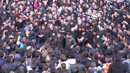 Iran, Ashura celebrations, sacrificing cow Footage