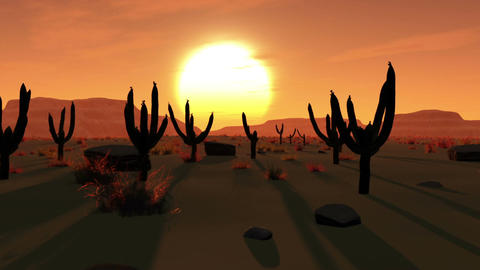 Desert Saguaro Cactus Field 1 Animation