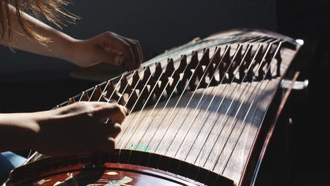 Guzheng Playing Live Action