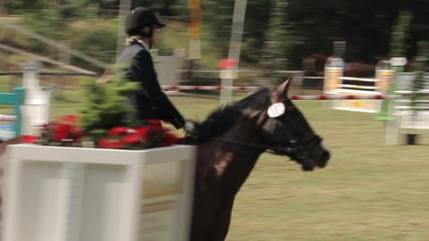 show jumping with horses Footage