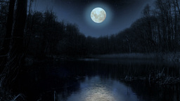 Moon over the lake at night Animation