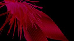 7 flower 20nurb, Stock Animation
