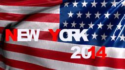 New York , 2014 stock footage