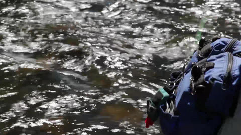 fly fishing tight Footage