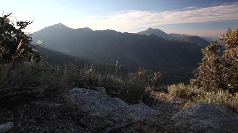 Hiking trail Footage