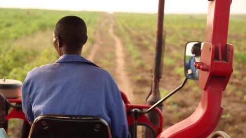 Man And Boy On Tractor stock footage