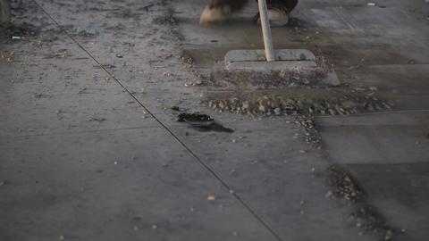 Construction site scrape cement Live Action
